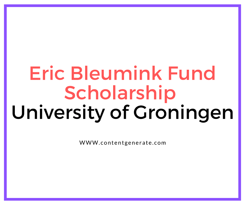 Eric Bleumink Fund Scholarship at University of Groningen