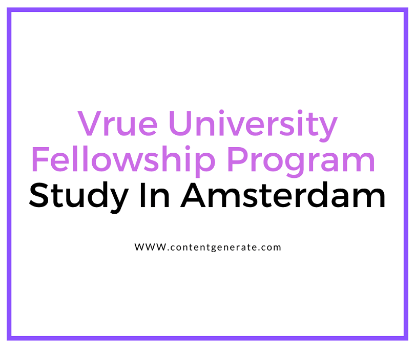 VU Fellowship Programme