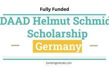 DAAD Helmut Schmidt Scholarship Germany 2021
