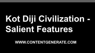 Kot Diji Civilization - Salient Features
