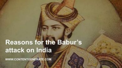 Reasons for the Babur's attack on India