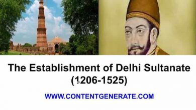The Establishment of Delhi Sultanate (1206-1525)